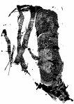 © 'Gallery' 2015 ink on paper Peteris Ciemitis