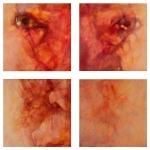© 'Parallax' 2008 polyptic, acrylic on canvas Peteris Ciemitis