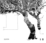 © 'This Tree is Numbered #18' 2014 ink on paper Peteris Ciemitis